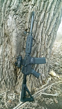 Smith & Wesson M&P 15 Sport with Magpul furniture and Vortex Spitfire optic