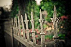 "Gallery of the Month - SEPTEMBER - Marco Martienssen ""Fences"""