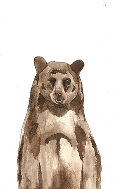 Bear watercolour illustration