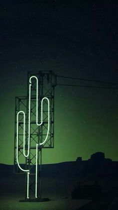 Neon signs and cactus vibes. Tinta Neon, Neon Cactus, Cactus Light, Cactus Art, Neon Aesthetic, Desert Aesthetic, Green Aesthetic Tumblr, Neon Lighting, Light Art
