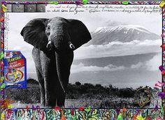 Peter Beard : Elephant by marilouneatl, via Flickr