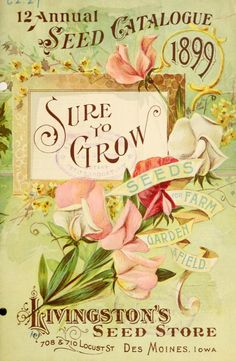 Front cover of '12 Annual Seed Catalogue' 1899. 'Sure to grow seeds for farm, garden & field.' Livingston's Seed Store. 708 & 710 Locust Street. Des Moines, Iowa.  U.S. Department of Agriculture, National Agricultural Library archive.org