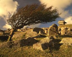 Bodmin Moor located in Cornwall, England Devon And Cornwall, Cornwall England, Jamaica Inn, English Countryside, British Isles, Great Britain, Places To See, Monument Valley, Weed