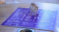 November 2012 Paris Trip - another Paris bird :)