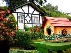 La Colonia Tovar y su tradicional cultura, un ejemplo a seguir, en el Edo. Aragua, Venezuela