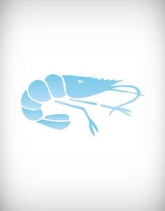 shrimp, seafood, vector, unusual, isolated, sea life, delicacy, red, sign, abstract, food, meat, ocean