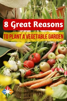 There are many, many great reasons to grow your own food, and here are just 8 of them! It's not too late to plant a vegetable garden--it's healthy and a great way to get good foods into your diet!