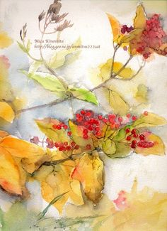 vini【水彩】本日もスケッチびより!-倾心水彩,倾心植物。 Floral Watercolor, Watercolour, Watercolor Paintings, Pictures To Paint, Paint Colors, Florals, Berries, Mixed Media, Birds