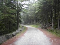 biked the carriage roads at Acadia National Park, Maine