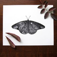 Monarch butterfly art  8x10 print  Black and by ZoeTilleyPoster, $18.00