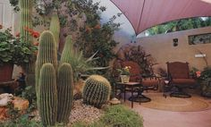 Enclosed patio....(from Phoenix Home & Gardens Magazine July 2009).