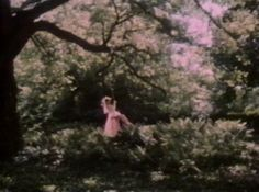 Fae Aesthetic, Pink Aesthetic, Princess Aesthetic, Summer Dream, Nymph, Faeries, Daydream, Aesthetic Pictures, Ethereal