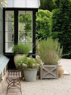 Container garden - ▇  #Home #Outdoor #Landscape  via - Christina Khandan  on IrvineHomeBlog - Irvine, California ༺ ℭƘ ༻