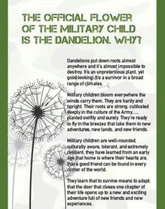 Military child Girl Scout for End of Year Awards