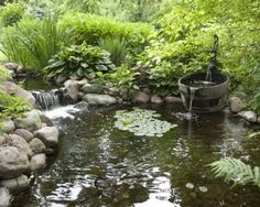 Imagine stepping outside to a refreshing backyard pond where the stress of the world slips from your shoulders.