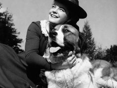 Once A Lapdog, Always A Lapdog, 1955