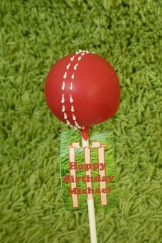 Great idea for a cricket fanatic! Sports Themed Birthday Party, Sports Party, 8th Birthday, Birthday Parties, Birthday Cakes, Cricket Cake, Yellow Theme, Bar Mitzvah, Holidays And Events