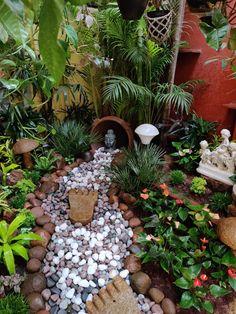 The Rameshes' Desi-Global, Green home in Bengaluru Terraced Backyard, Garden Landscaping, House Plants Decor, Plant Decor, Balcony Design, Garden Design, Indian Garden, Mini Farm, Terrace Garden