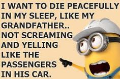 I want to die peacefully in my sleep, like my grandfather.. not screaming and yelling like the passengers in his car. - minion