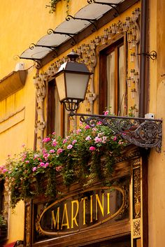 Shop Front with flower boxes in Lucca, Italy (region of Tuscany). Hmmm .. wonder what this shop sells? ASPEN CREEK TRAVEL - karen@aspencreektravel.com