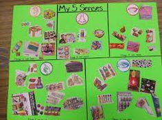 5 senses Whole group?
