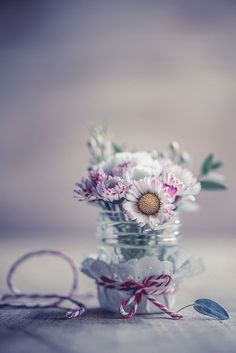 Explore amazing art and photography and share your own visual inspiration! Daisy Wallpaper, Cute Wallpaper Backgrounds, Love Wallpaper, Nature Wallpaper, Cute Wallpapers, Book Flowers, Shabby Flowers, Pretty Flowers, Spring Art