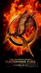 The Hunger Games: Catching Fire - Logo Reveal - http://best-videos.in/2012/11/21/the-hunger-games-catching-fire-logo-reveal/