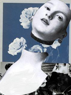 Fleur D'Arabie (2012)