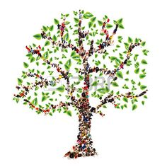 Family Tree Stock Illustrations, Cliparts And Royalty Free Family Tree Vectors