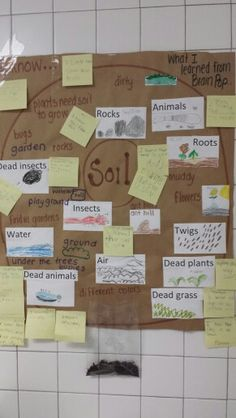 Science Anchor Chart - Soil- I might change this up and do the soil layers as an exit ticket. Kindergarten Anchor Charts, Science Anchor Charts, Kindergarten Science, Science Classroom, Teaching Science, Science Education, Science Activities, Science Topics, First Grade Science