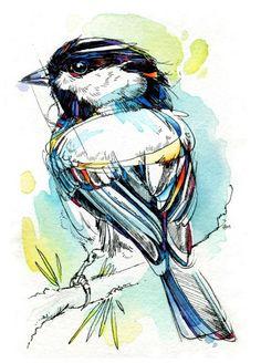 Watercolor Bird by Abby Diamond