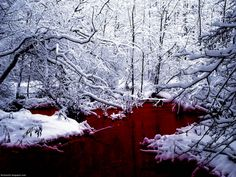 Blood River, Scotland- reminds me of fairy tales or fantastical story settings
