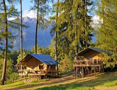Safari in Tirol: 3 Tage ab p. in einer coolen Lodge am Natterer See Innsbruck, Glamping, Safari, Hotels, Outer Space, Terrace, Cabin, House Styles, World