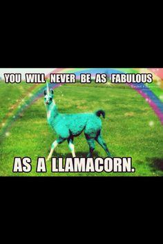 Llamacorn @Mouseandkitty @Lexi Pixel Peterson