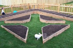 raised beds for the garden