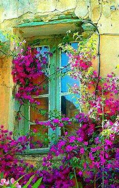 31 ideas old door design paint Old Doors, Windows And Doors, Beautiful Places, Beautiful Pictures, Window Boxes, Garden Gates, Painted Doors, Doorway, Door Design