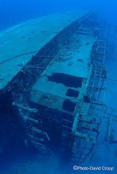 A shipwreck in the Pacific www.flowcheck.es Taller de equipos de buceo #buceo #scuba #dive