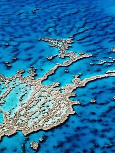 Hardy Reef, Near Whitsunday Islands, Great Barrier Reef, Queensland, Australia by Holger Leue Landscapes Photographic Print - 46 x 61 cm Great Barrier Reef, Coral Reef Color, Coral Reefs, Maui Vacation, Ways Of Seeing, Art Plastique, Beautiful World, Beautiful Beautiful, Beautiful Places