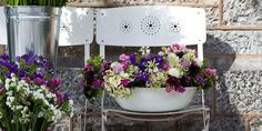 The Good Flower Company - environmentally friendly eco flowers in Exeter