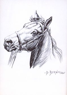 stampede of horses coloring pages - photo#37