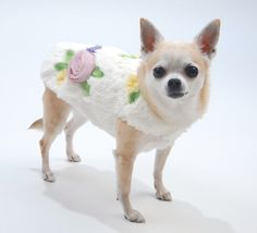 Shop where every purchase helps shelter pets! Oscar Newman Love'n Lush Plush Coat - White - from $78.95