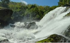 Feel the chilly mist at the ever rustling Shivsundram Waterfalls!