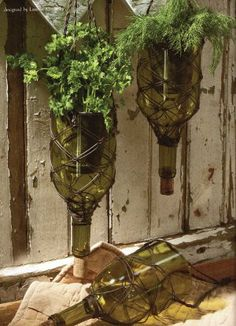 Wine/ Green Thumbs & Upcyclers Rejoice!! Here's A Nifty Thrifty DIY Wine Bottle Herb Garden Tutorial!!!