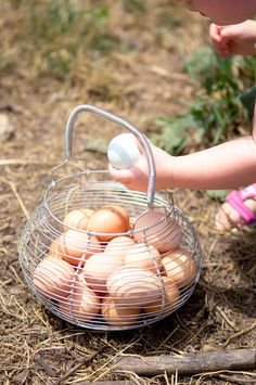 *love fresh farm eggs