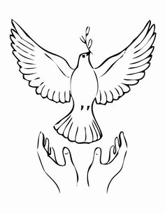 10 Dove coloring page: Peace dove Printable coloring page for kids, birthday party dove coloring activities for kids, dove coloring sheet Art Drawings Sketches Simple, Bird Drawings, Pencil Art Drawings, Cute Drawings, Bird Coloring Pages, Coloring Pages For Kids, Coloring Books, Kids Coloring, Dove Drawing