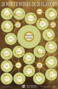 Your Complete Guide To White Wine | POPSCI - May 24, 2013 [http://www.popsci.com/files/imagecache/article_image_big/articles/wine_1.jpg]