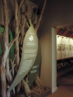 Eucalyptus Discovery Centre features the Eucalypt's ecological role, diversity and uses. We at Challis Design has represented it through the interactive displays, audio visual presentation, murals text panels and more. Interactive Display, Timber Structure, Signages, Barnsley, Ecology, Discovery, Digital Prints, Centre, Innovation