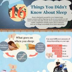 Infographics - 16 Things You Didn't Know About Sleep