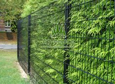 This twin wire mesh fencing also be called fencing,d ouble Wire mesh fence, Twin Wire Mesh Fencing Panel Uniquely design of double horizontal wire combing high strength vertical wire welded panel have strong power to anti-climb and anti-cut. Palisade Fence, Fencing For Sale, Mesh Fencing, Steel Fence, Chain Link Fence, Wire Mesh, Mesh Panel, 2d, Twin