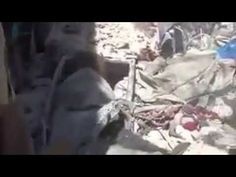 -A -terrorist- horse killed by #Assad_Putin air strikes in addition to s...